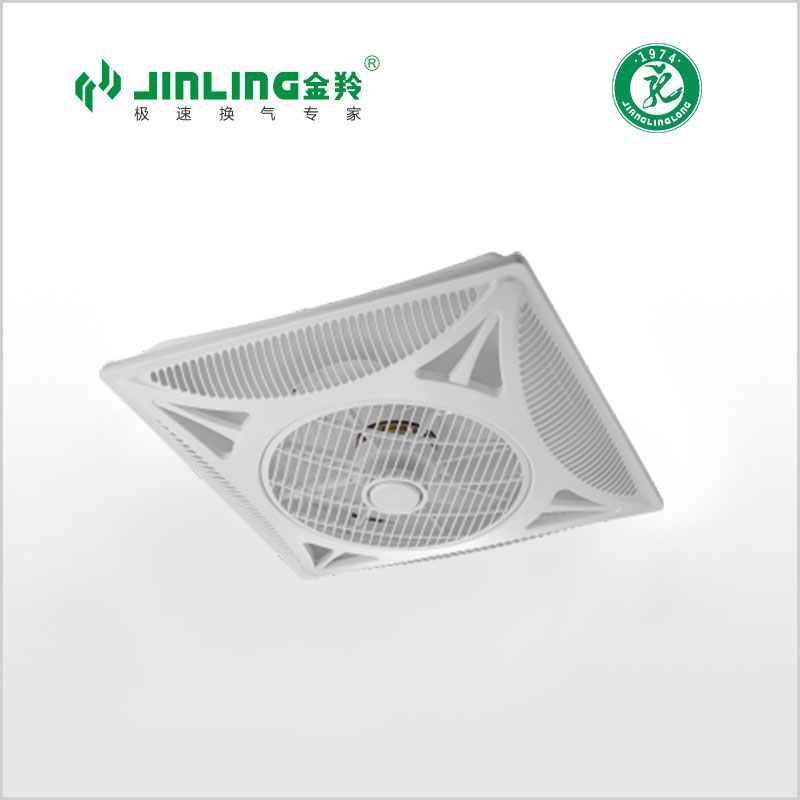 Ceiling Mount Fan